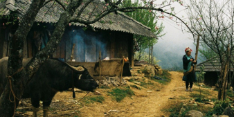 Resilient livelihoods: Increasing the ability of communities to prevent, mitigate and cope with extreme weather events