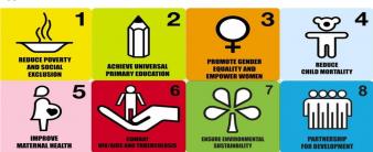 National Millennium Development Goals report 2015